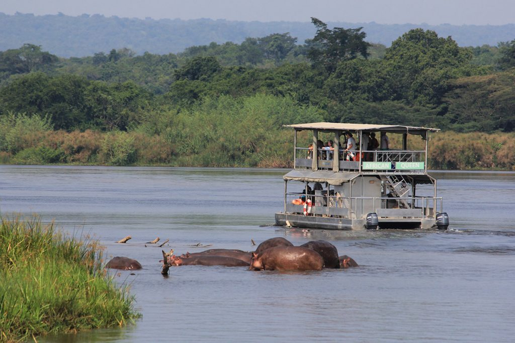 Game viewing in murchison on a boat