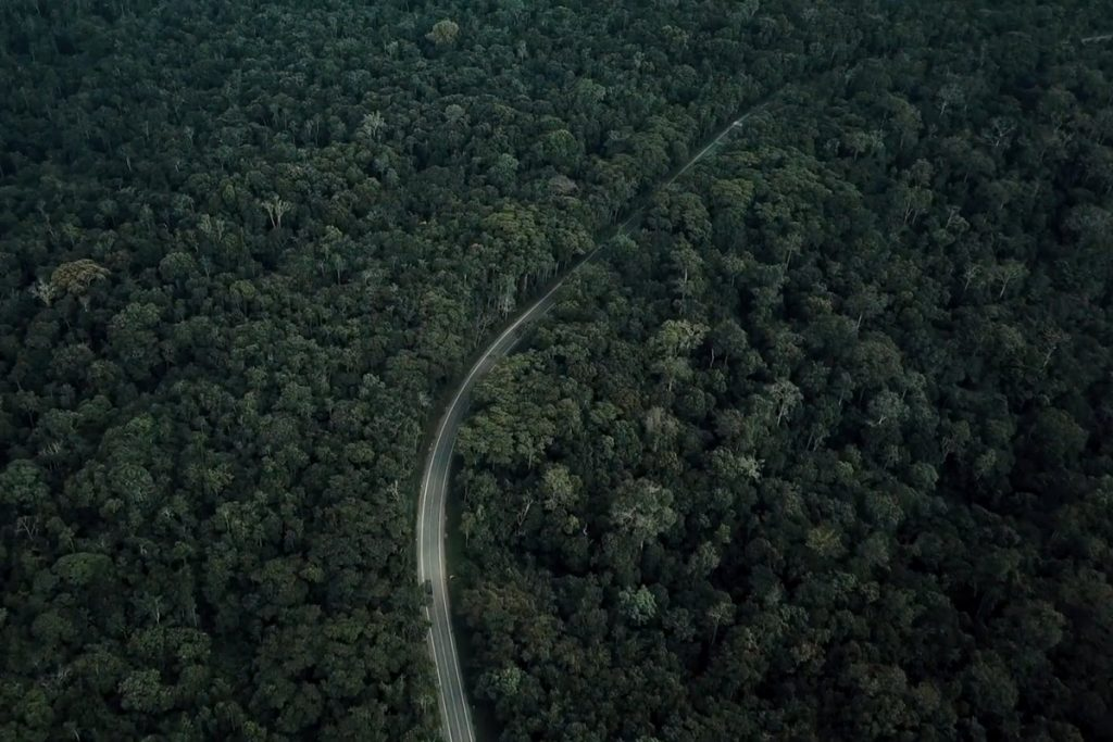 Fort Portal Kmwenge Road through Kibale Forest