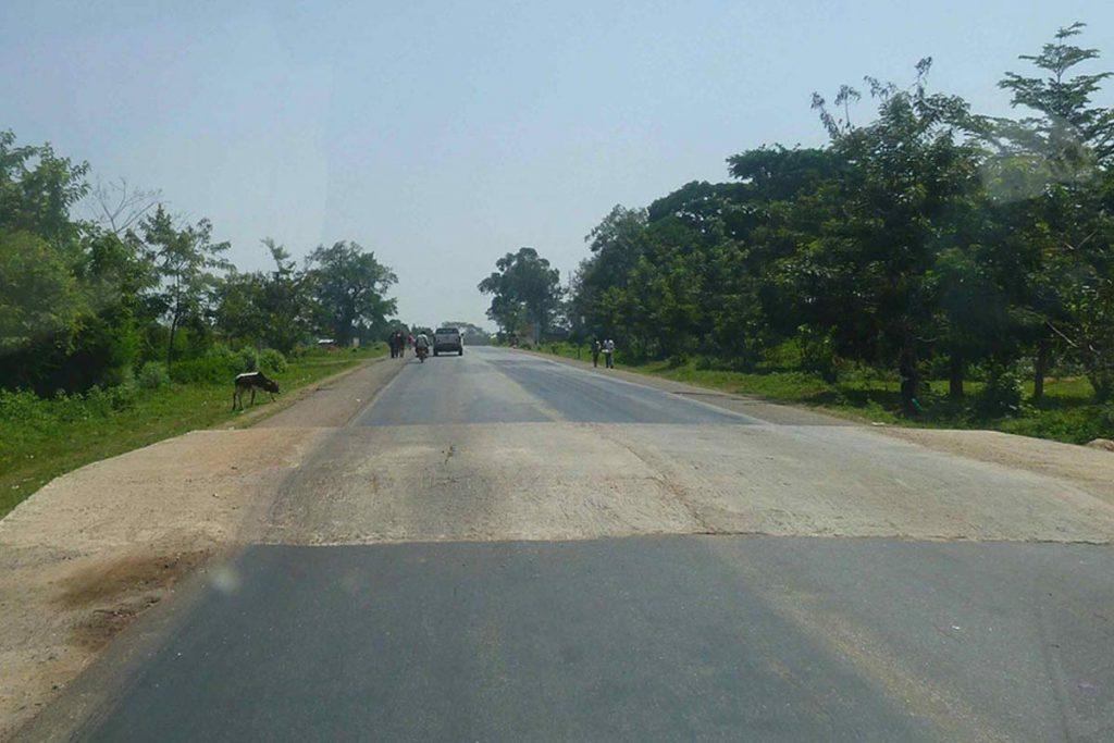 Seed bumps in Uganda