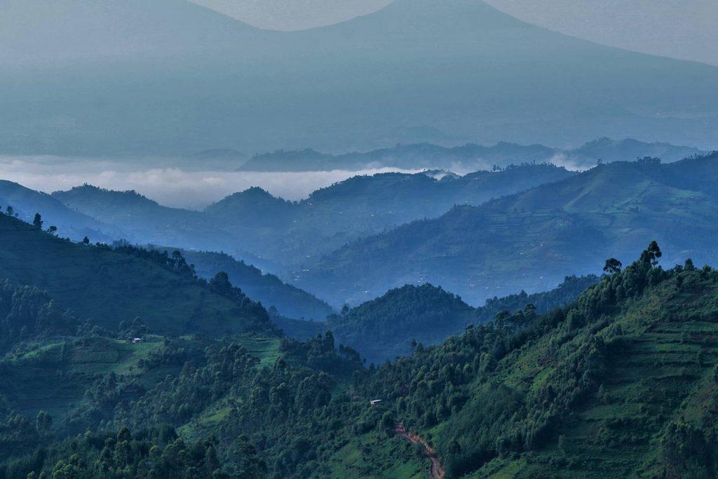 A view of the misty Bwindi Impenetrable Forest Photo © Burt Baguma