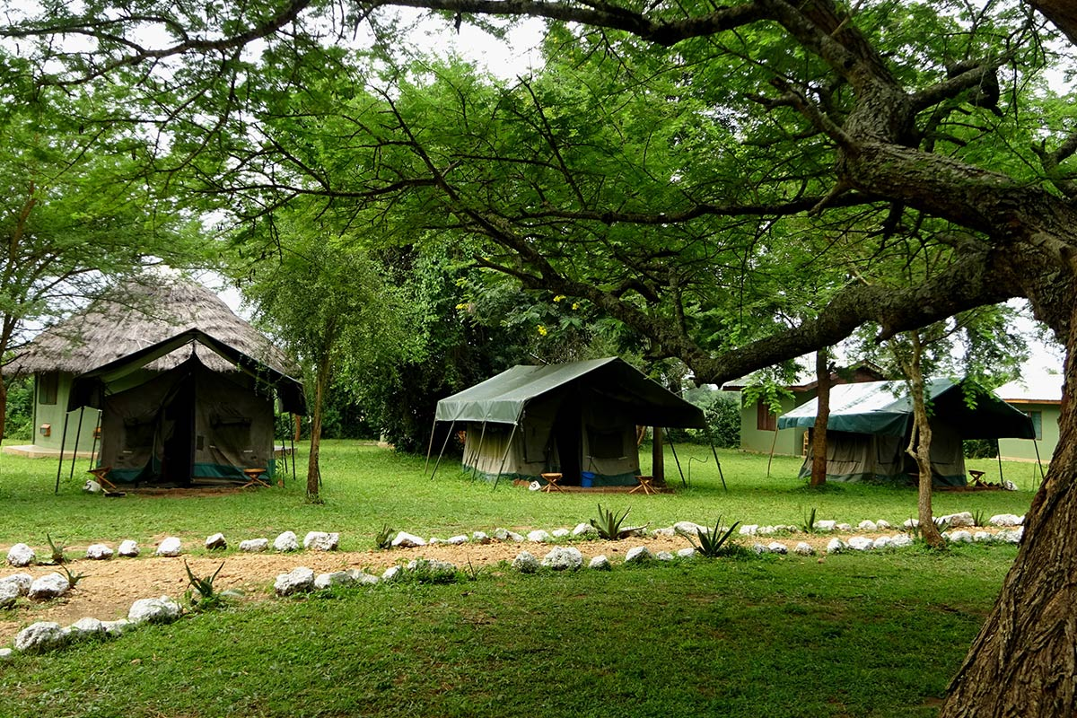 Red Chilli Camp budget accommodation in Murchison Falls: How to save money on accommodation on a Uganda trip