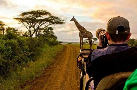 Pearl of Africa, Uganda Travel, Gorilla Trekking and Safari Planning Guide