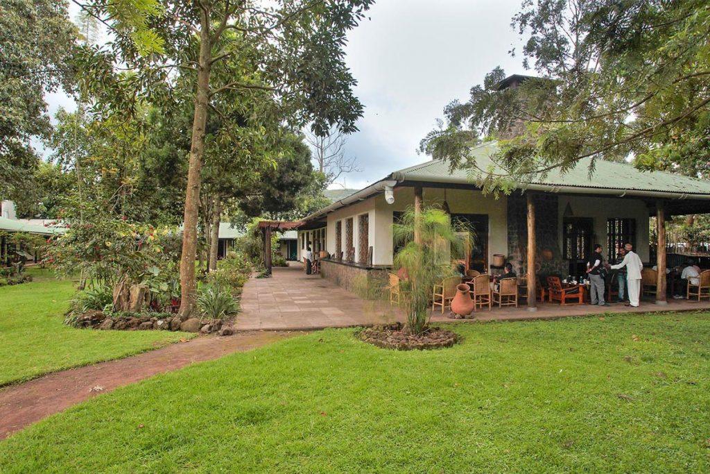 Traveler's Rest Hotel in Kisoro (14 km form Mgahinga), a low-cost alternative.  The alternative primate safari in Uganda without gorillas