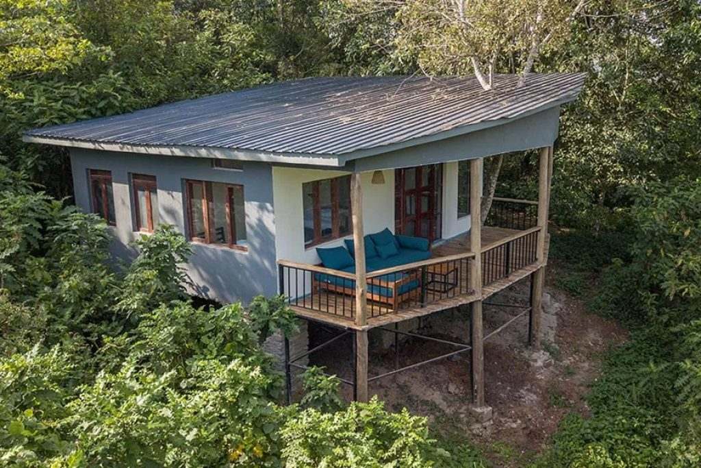 Turaco Treetops Lodge in Kibale, a low-cost choice for chimpanzee habituation experience.